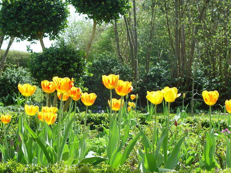 Fr hlingsgartenarbeiten unterhaltplus - Gartenarbeiten im mai ...